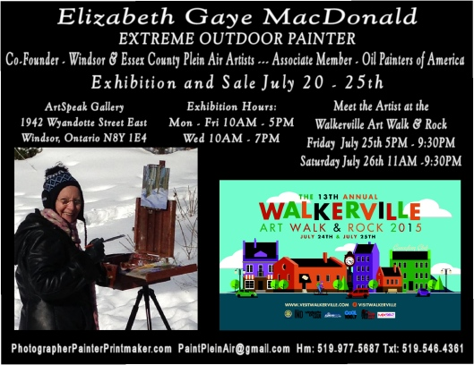 Solo Show Windsor & Region Arts Council, Art Speak Gallery during the Walkerville Art Walk & Rock